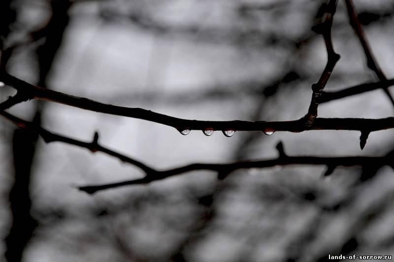баста так плачет весна скачать песню