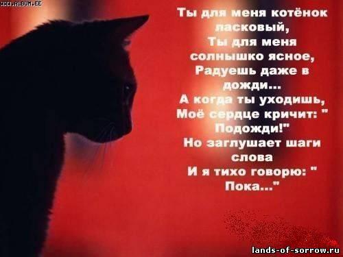 Грустные песни о любви на русском скачать
