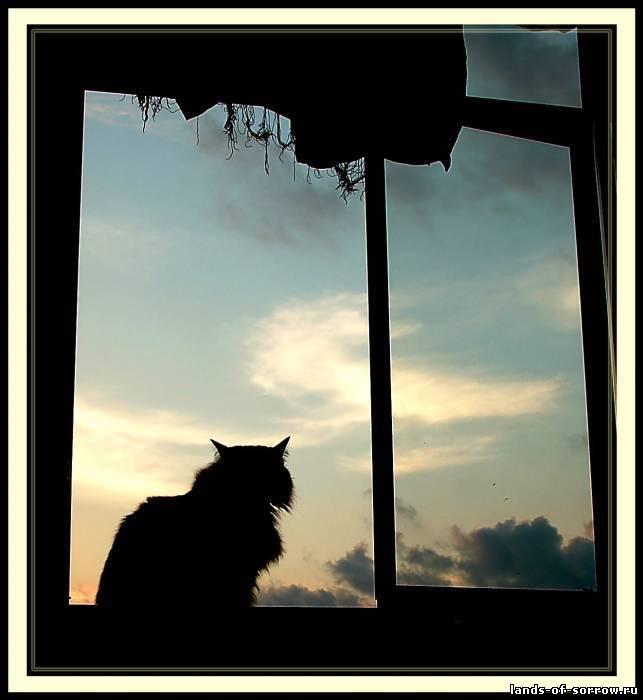 И наступит может то утро, когда я проснусь, посмотрю на себя в зеркало и снова захочется дышать и наконец-то по-настоящему захочется жить и наступит тот вечер, когда я